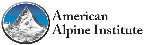 AAI Logo 2013